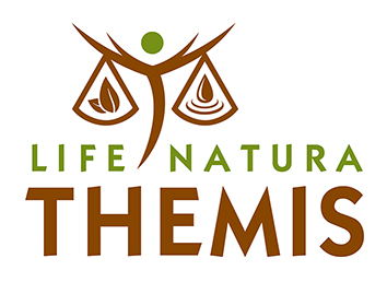 themis-logo